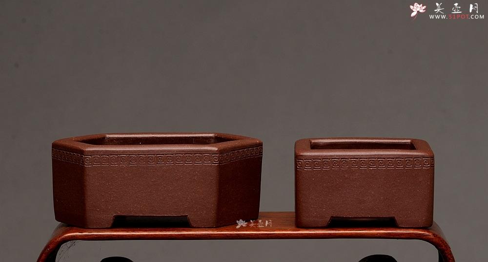 紫砂壶图片:张秋平全手微型花盆 美壶网回馈之作 气度更加漂亮 - 全手工紫砂壶网