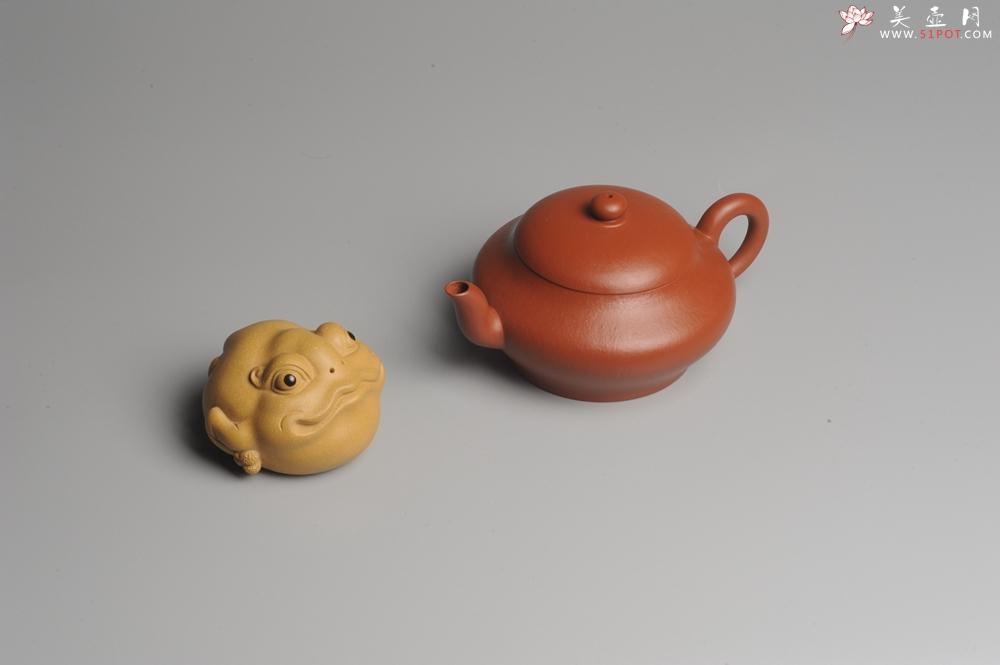 紫砂壶图片:小煤窑朱泥 全手工扁灯壶 端庄秀雅 - 全手工紫砂壶网
