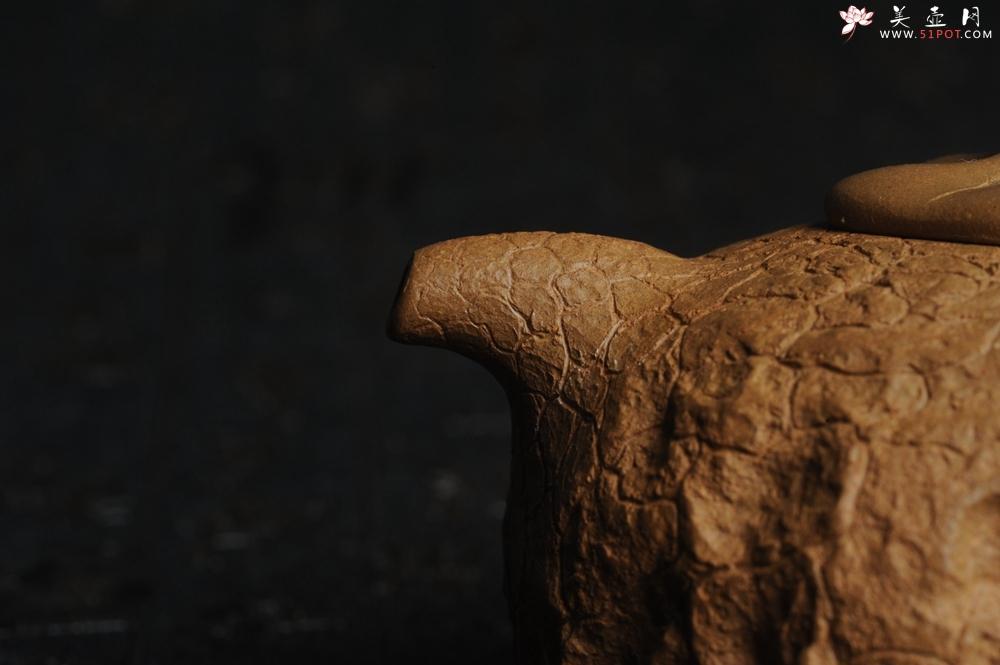 紫砂壶图片:美壶特惠 进步明显优质黄金段全手工供春壶 异型盖 难度大 肌理丰富 - 全手工紫砂壶网