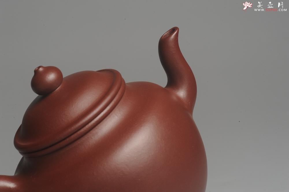 紫砂壶图片:油润黄龙山4号深井红皮龙 全手工高灯壶 东西灰常赞 - 全手工紫砂壶网
