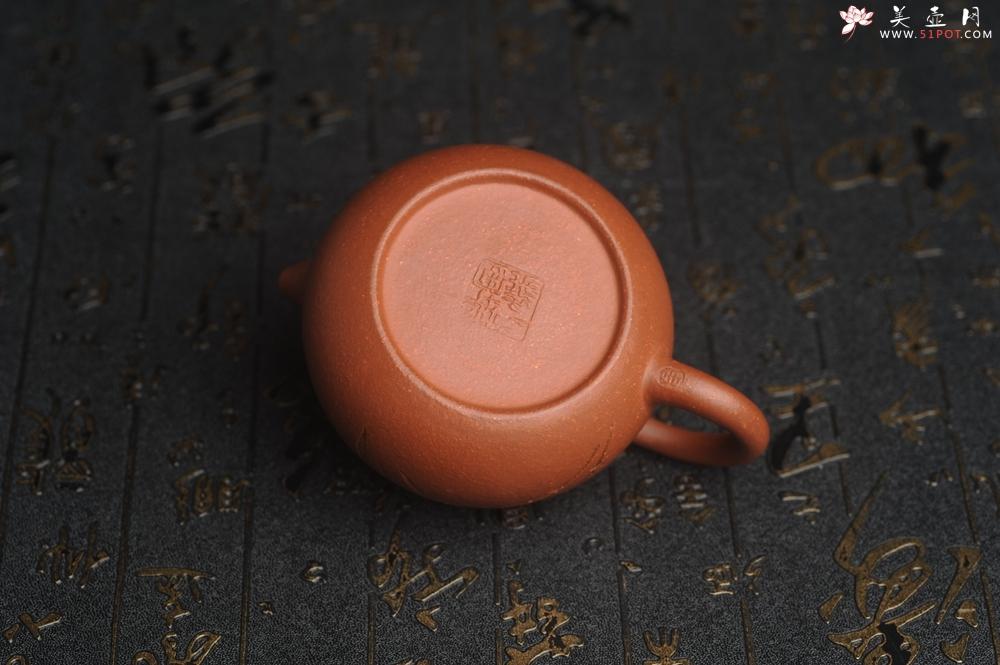 紫砂壶图片:油润降坡泥全手工小品西施壶 装饰居不可无竹 特文气 - 全手工紫砂壶网