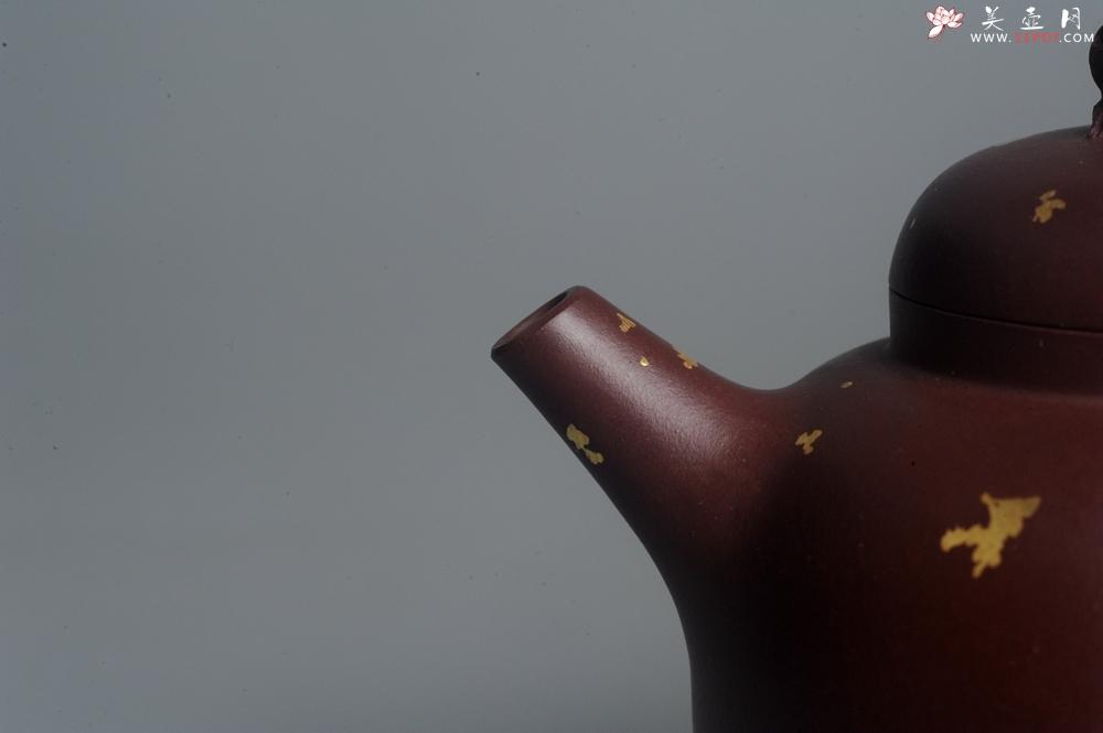 紫砂壶图片:潜力股周小培 全手工原创招财壶200cc 金蟾屹立于壶盖 撒金工艺铺满壶身 寓意黄金落满地 招财进宝 - 全手工紫砂壶网