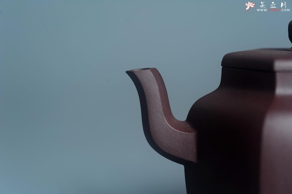 紫砂壶图片:美壶特惠 潜力股凌晨老师 精致紫泥全手工高登壶 期待与您结缘 - 全手工紫砂壶网